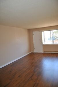 One bedroom apartment in sherwood park