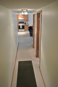 Basment suite okotoks. ALL utilities included.