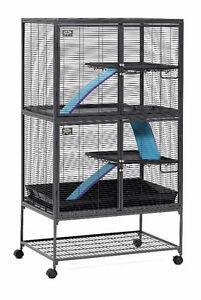 Looking for cage suitable for rat
