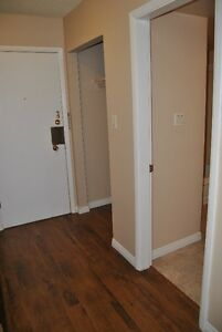 One Bedroom Apartment  with free telus internet and cable Strathcona County Edmonton Area image 5