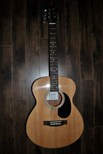 Denver DF44S-NAT guitar and accessories for sale