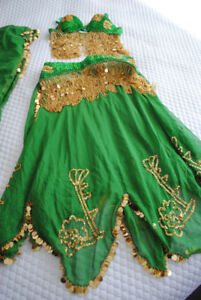 VARIETY OF BELLY DANCE COSTUMES $50 OBO