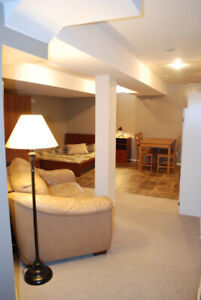 Clean and Bright Bsmnt STUDIO Apt - Parking+Sep W/o - Imm./ Feb/