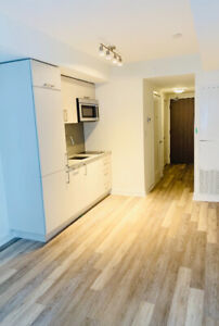 Brand New Luxury Studio Unit For Rent In Downtown Toronto