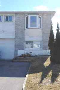 2 BDRM LOWER LEVEL, PRIVATE LAUNDRY! All Nov 1st! Book NOW!!