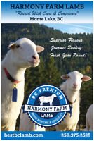 Premium BC Lamb Available Year Round!