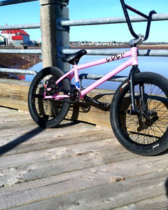 Fully Custom Cult Bmx