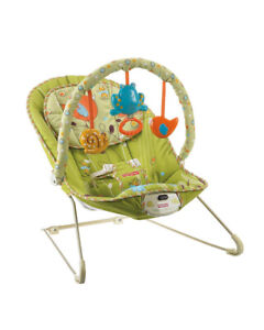 Fisher-Price Green Meadows Comfy Time Bouncer Chair