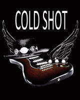 Cold Shot is Looking for a BASS PLAYER for a SRV Tribute.