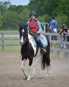 Newer Club hosts Fun Horse Show on July 21st!