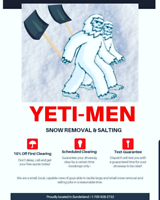 Fast Snow Shoveling and Salting Service