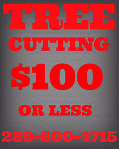 $100 OR LESS.TREE CUTTING,TRIMMING,PRUNING,REMOVAL.