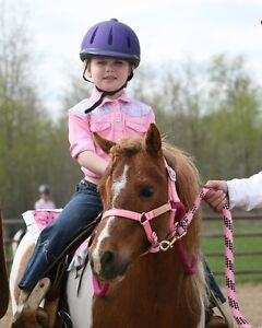 """Free"""" For the Love of the Horse"""" Kids Clinics"""