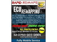 remaping custom tuning/egr/dpf delete & diagnostics all obd remaps £100