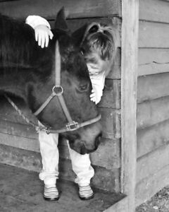 Horse/pony for Equine Ministry
