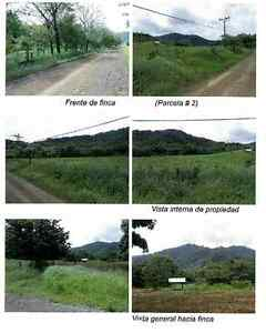 Farm for sale in Costa Rica great opportunity