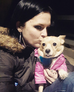 Single woman and chihuahua rescue looking for 1 bedroom apt