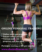 Custom work out program & online personal trainer