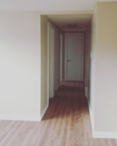 Clean Bright Apartment in Mount Pearl St. John's Newfoundland image 6