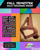 Adult beginner Aerial Arts foundation course