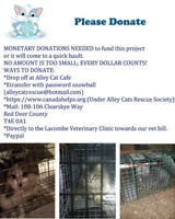 "Alley Cat Rescue  ""feral colony release site"""
