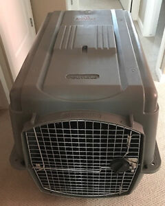 Petmate 00500 Sky Kennel for Pets 70 to 90-Pounds - Light Gray