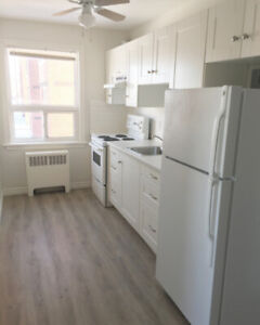 Hamilton Mountain New Reno 1 Bedroom Escarpment View Juravinski