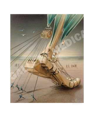 Podiatric Podiatry Orthopedic Foot Ankle Art Poster