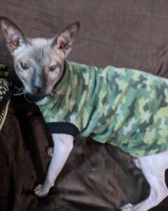 """Sphynx Cat Clothing """"Kat Klothes"""""""