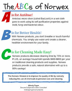 Cleaning without Chemicals - Norwex Leader Stratford Kitchener Area image 5