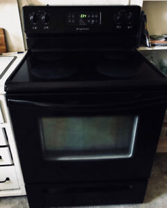 Black Self Cleaning Stove