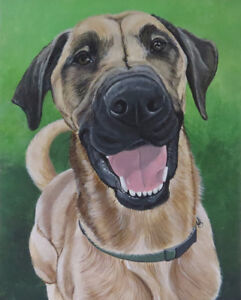 *Painted Pet Portraits ~ Ready in time for Christmas! *