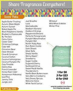 Looking for Scentsy Independant Consultant Belleville Belleville Area image 3