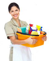 experienced cleaning lady