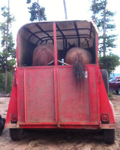 2-horse straight haul trailer- great condition- all ready to go Williams Lake Cariboo Area image 8