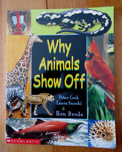 Children's animal books - prices are listed