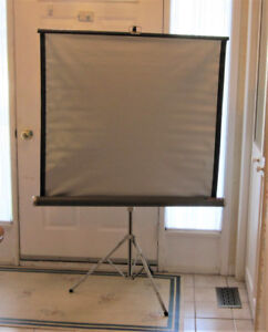 Vintage Silver Knox Panorama Movie Projection Screen
