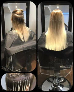 HAIR EXTENSIONS, colour, cut and more.... (FB: Chaldo HAIR) Kitchener / Waterloo Kitchener Area image 1