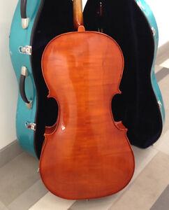 Cello in lightweight case