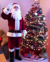 Christmas is only 1 month away - order your Santa now!