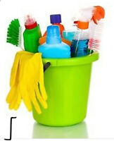 Cleaning Services!
