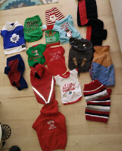 Large collection of clothing for small dog $ 1 - $ 4