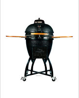 Vision Grill Professional C-series kamado grill