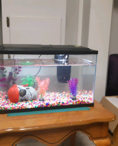 Fish tank and filter for sale.