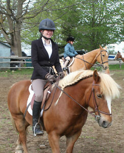 Lovely pony for Riding lessons :) Kitchener / Waterloo Kitchener Area image 5