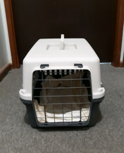 Dog carry crate