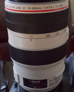 Canon 70-300mm L IS  USM F4 - 5.6 Lens ...OBO