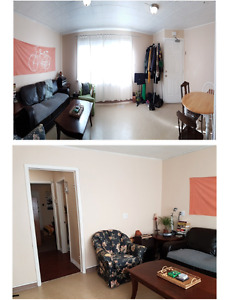 2Br Apartment with unlimited High Speed Internet for rent