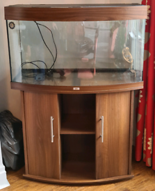 Juwel Bow Fronted 3 Foot Fish Tank with Dark Wood Cabinet