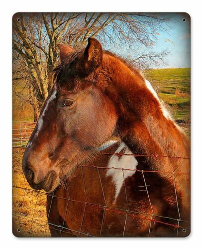 HORSE LOOKING OVER FENCE HEAVY DUTY USA MADE METAL HOME DECOR DECORATIVE SIGN